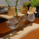 Light bulb Window sill planter
