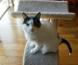 No-Stoop Cat Litter Box