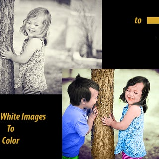 bw to color.jpg