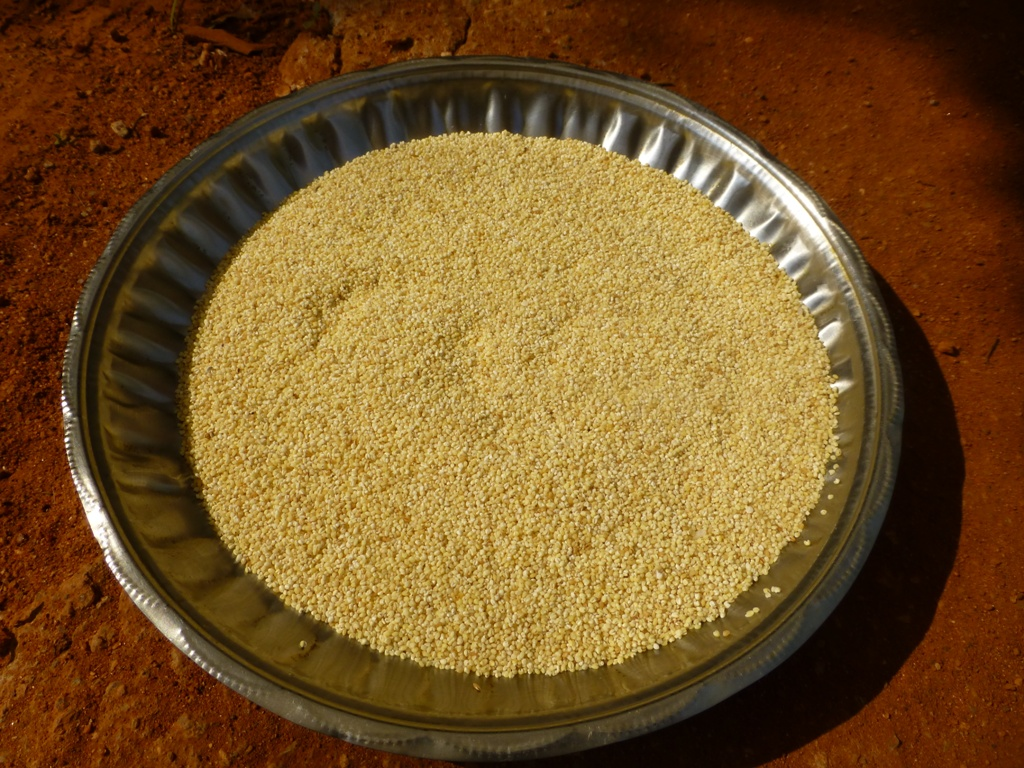 Picture of Clean the Foxtail Millet