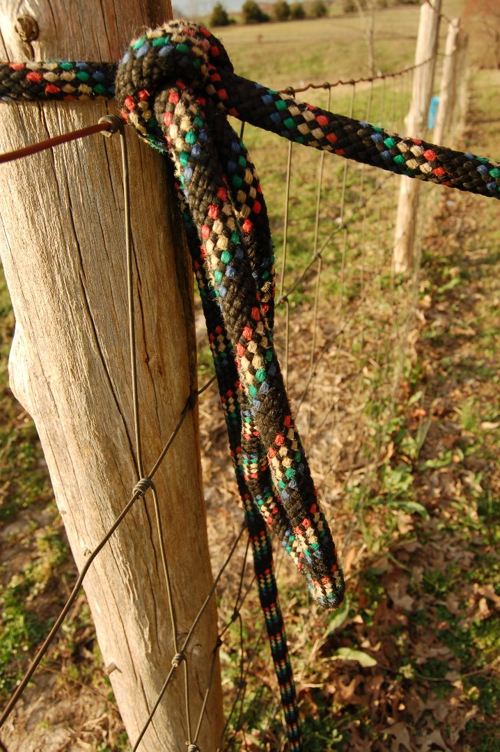 Picture of Use a Lead Rope to Secure Your Horse