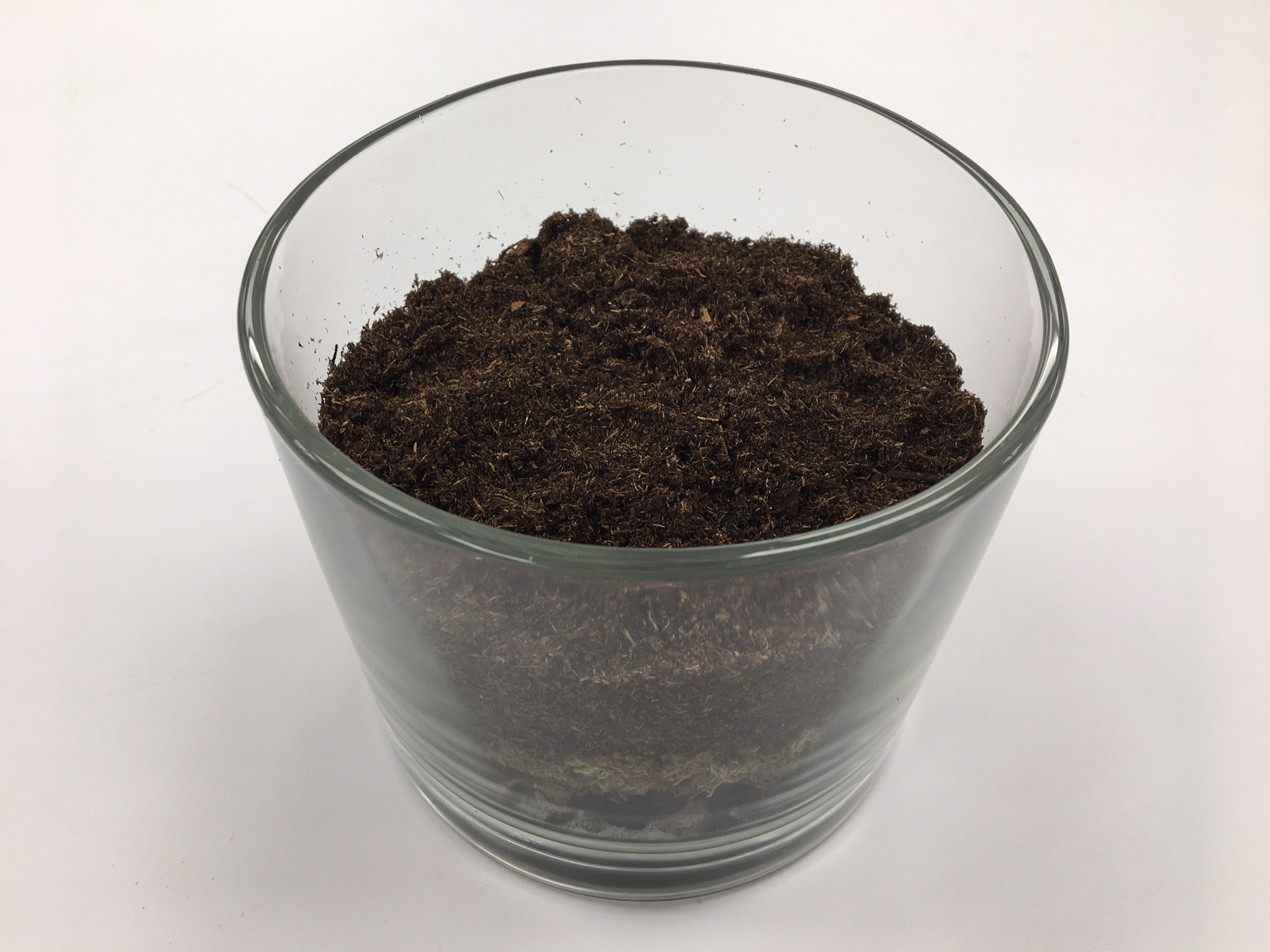 Picture of Layer Four - Soil