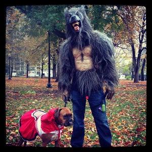 Homemade Wolf Costume.