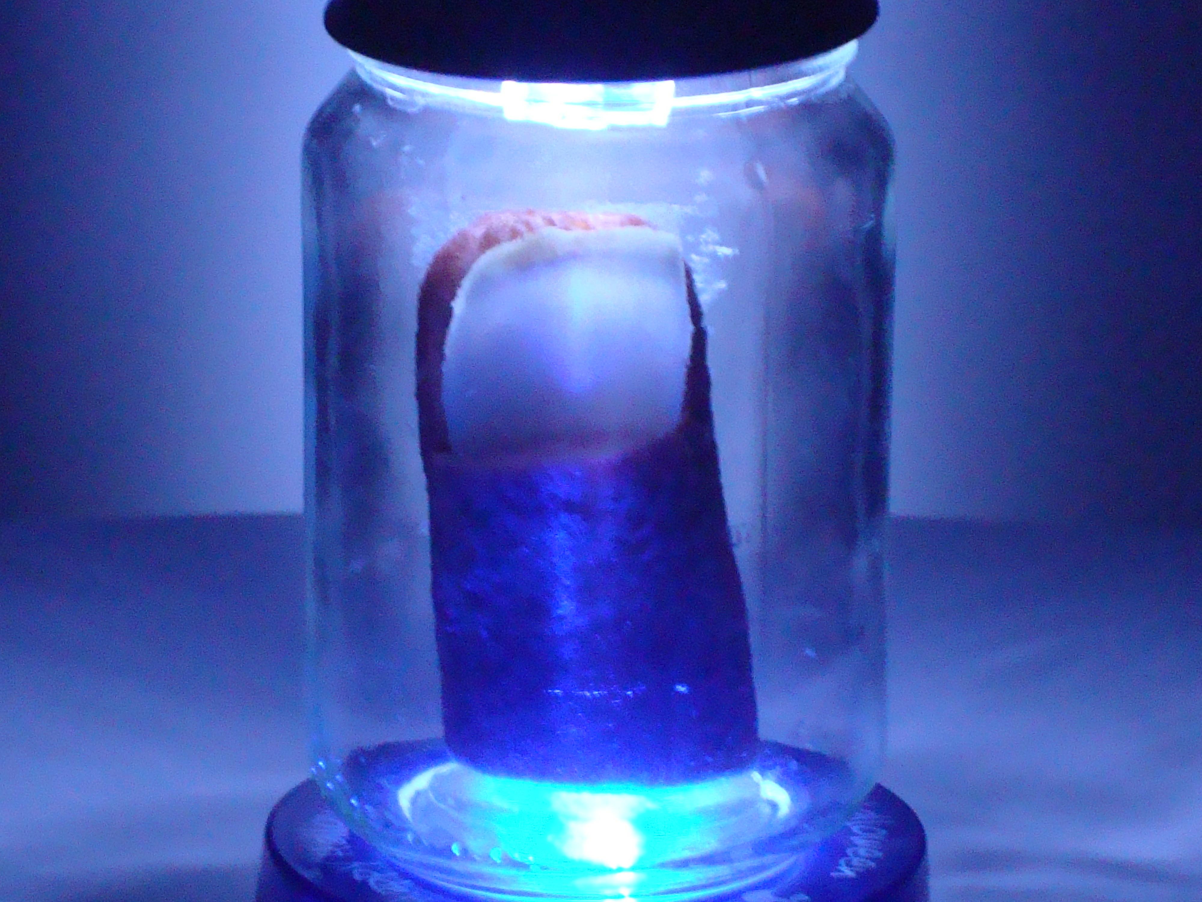 Picture of Jar Specimen