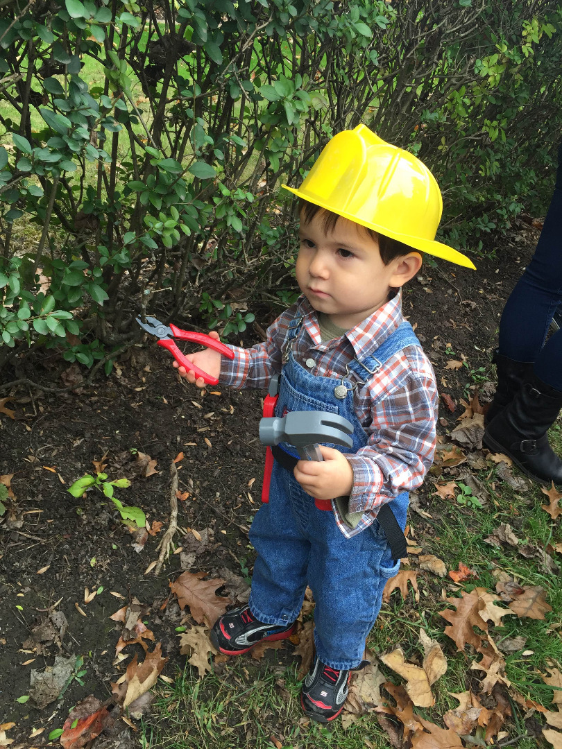 Picture of Bob the Builder