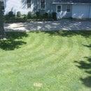 Quick and Easy Lawn Striper