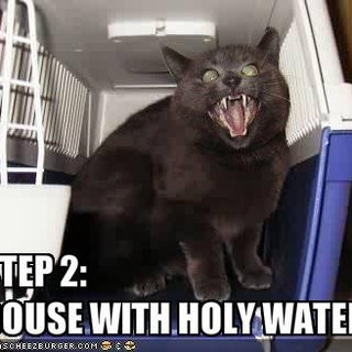 funny-pictures-your-cat-should-be-doused-in-holy-water.jpg