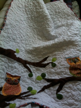 Picture of How to Make an Applique Quilt
