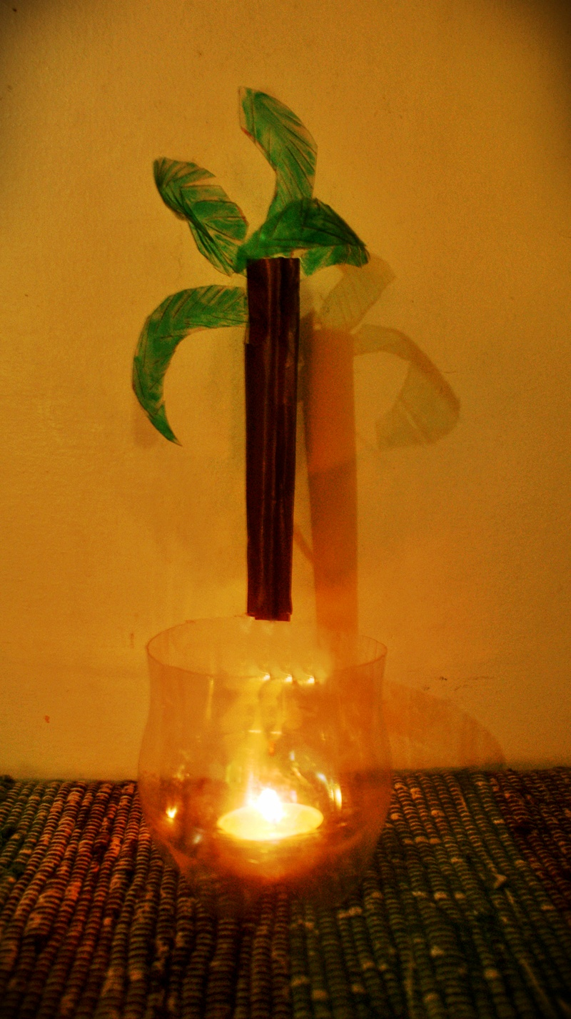 Picture of Coconut Tree Plastic Holder