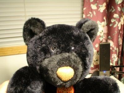 Build a Webcam Teddy Bear