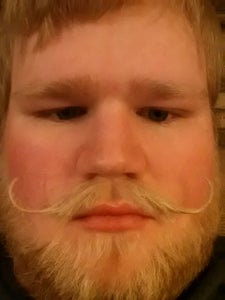 """Mounted """"Hipster"""" Mustache"""