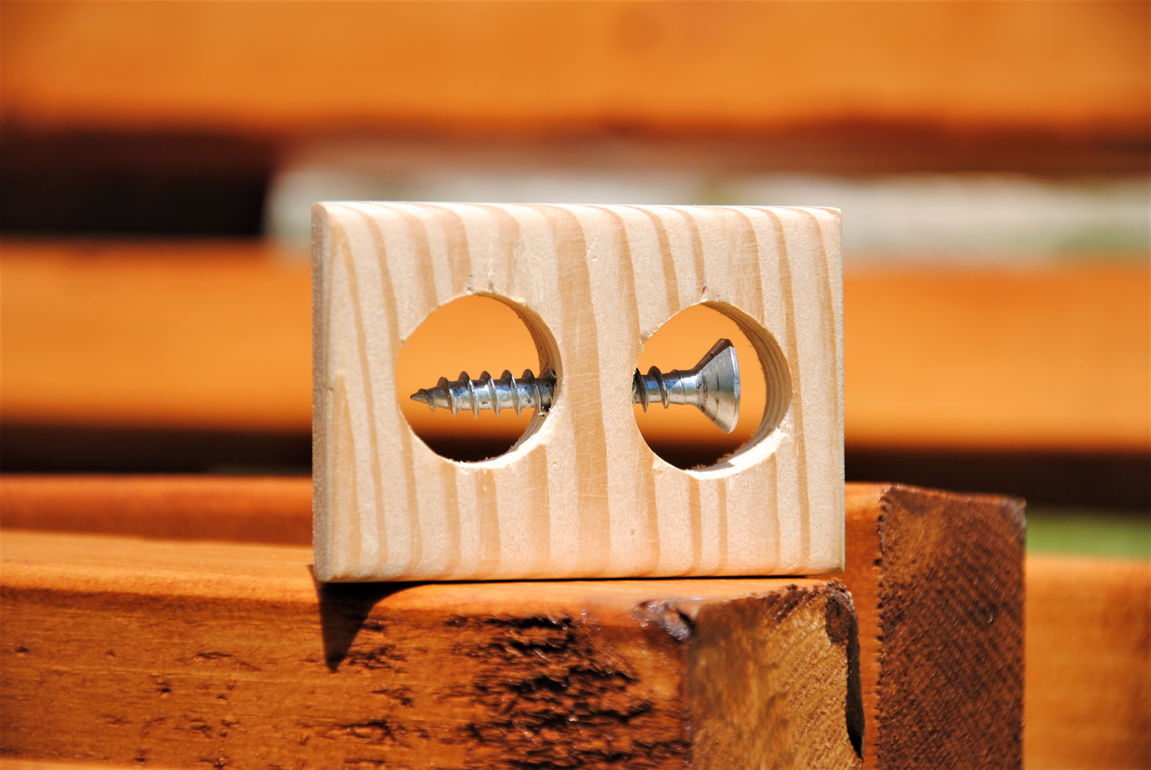 Picture of Impossible Screw in a Block of Wood