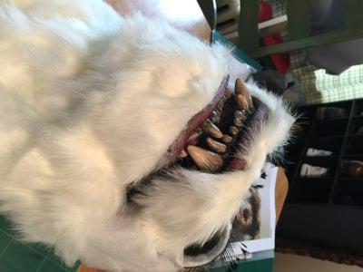 Continuing Fur Placement.