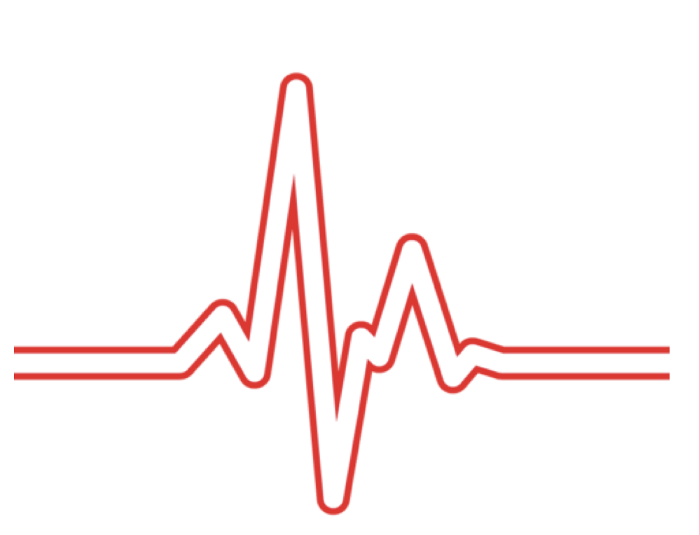 Picture of ECG and Heart Rate Monitor