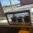 Greenhouse Box