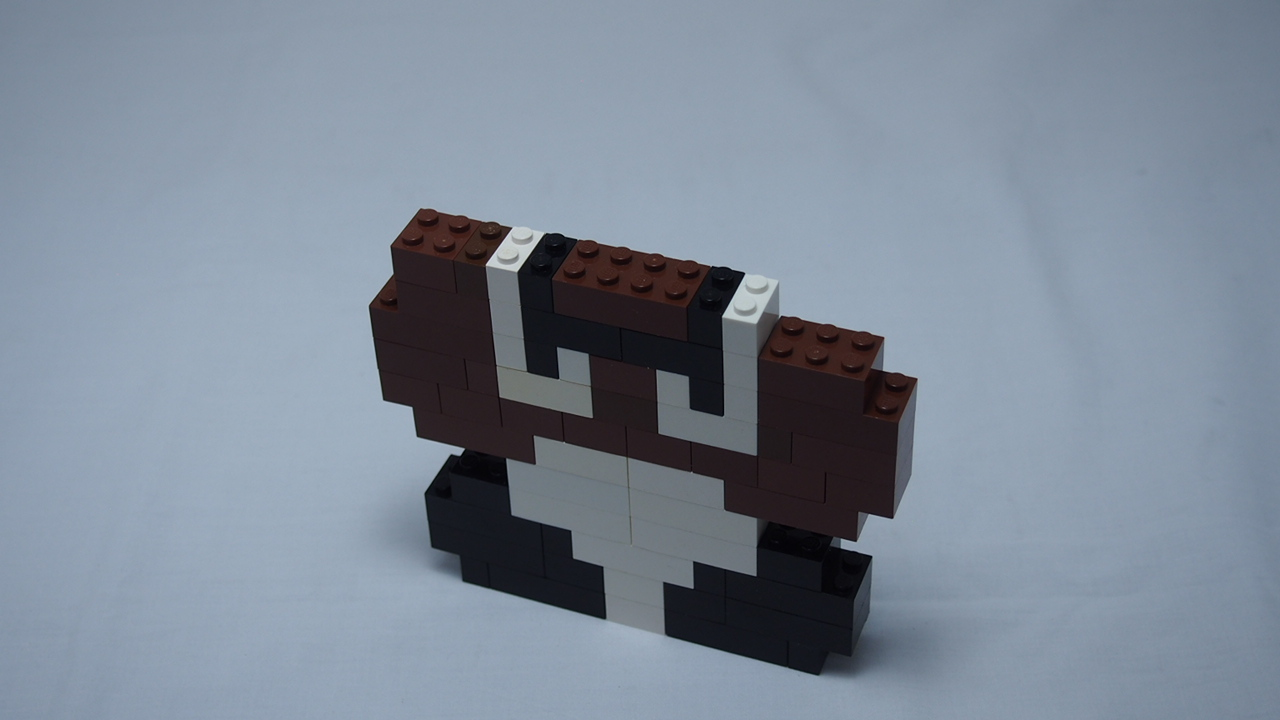 Picture of Goomba Part 2