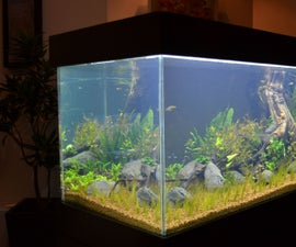 Build an aquarium that looks good on any living room
