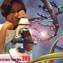 How to extract your own DNA at home