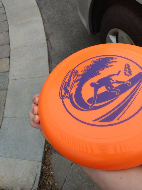 Picture of Frisbee:backhand