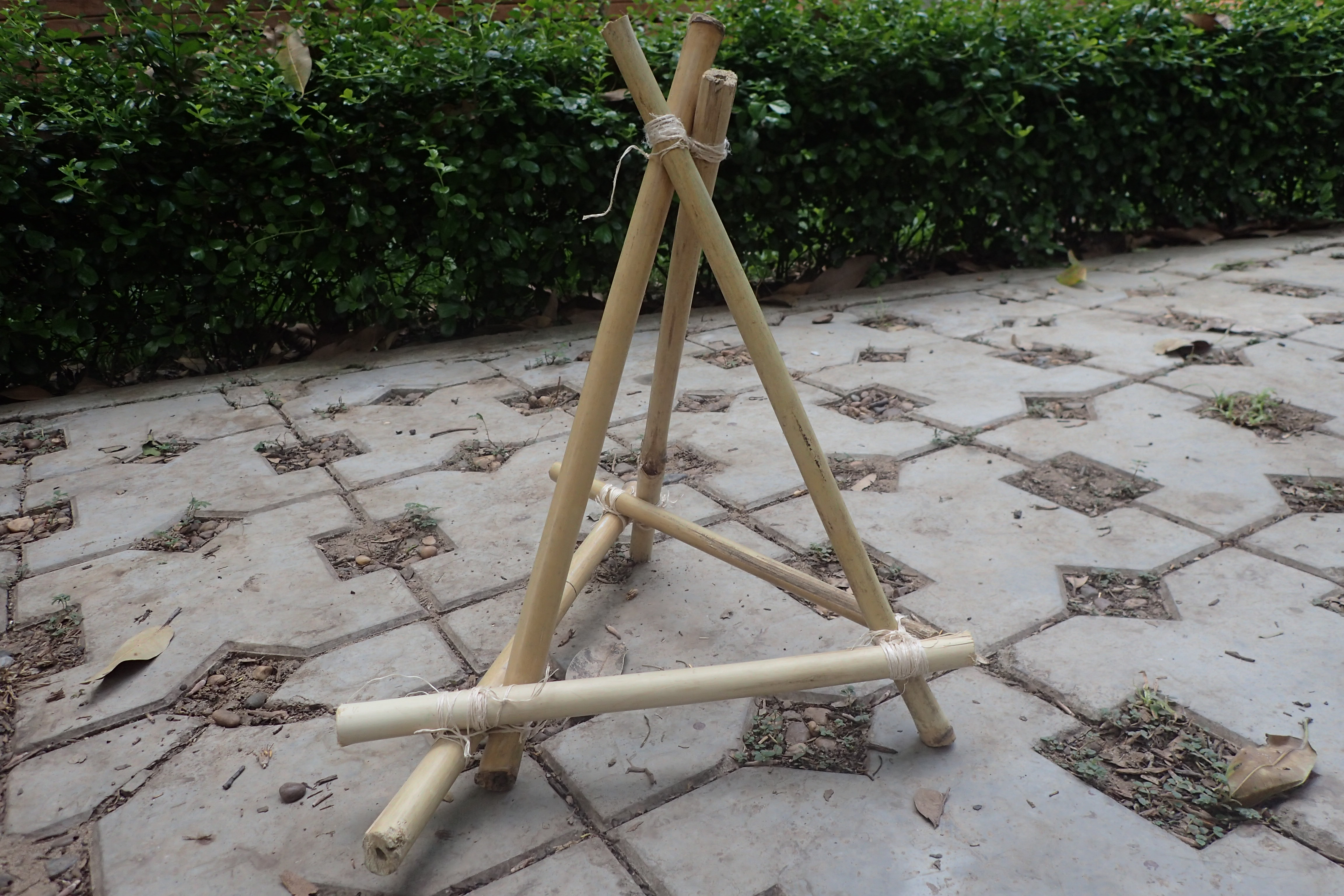 Picture of Bamboo Pyramid