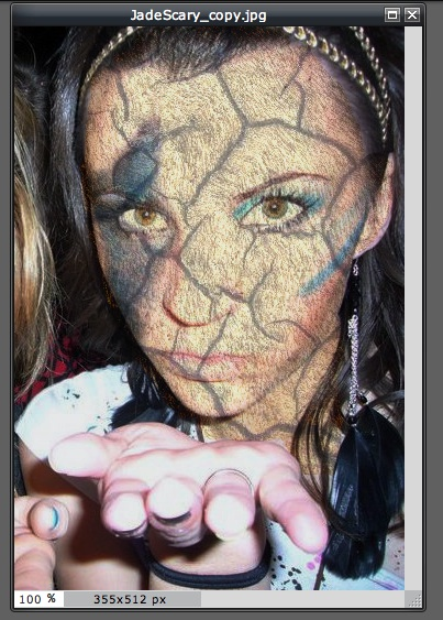 Picture of Third Step of Selecting the Skin Texture to Replace: Choose Your Blending 'mode'
