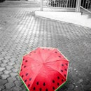 Gift a hand-painted watermelon umbrella!