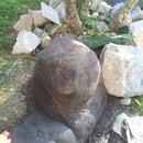 concrete rocks and sculptures