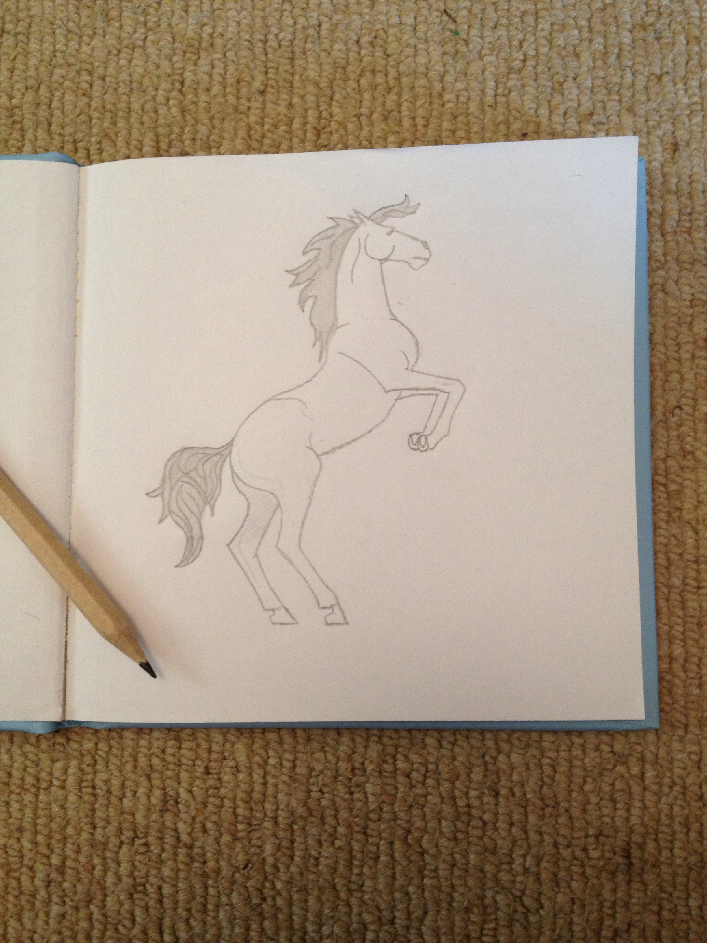 Picture of How to Draw a Horse