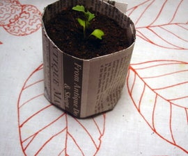 Make Your Own Seedling Pots Out of Newspaper