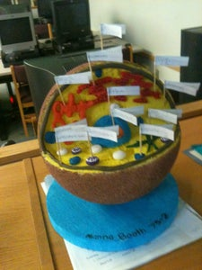 Extension Project #9 - Build a Cell Model