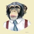 TheChimpanzee