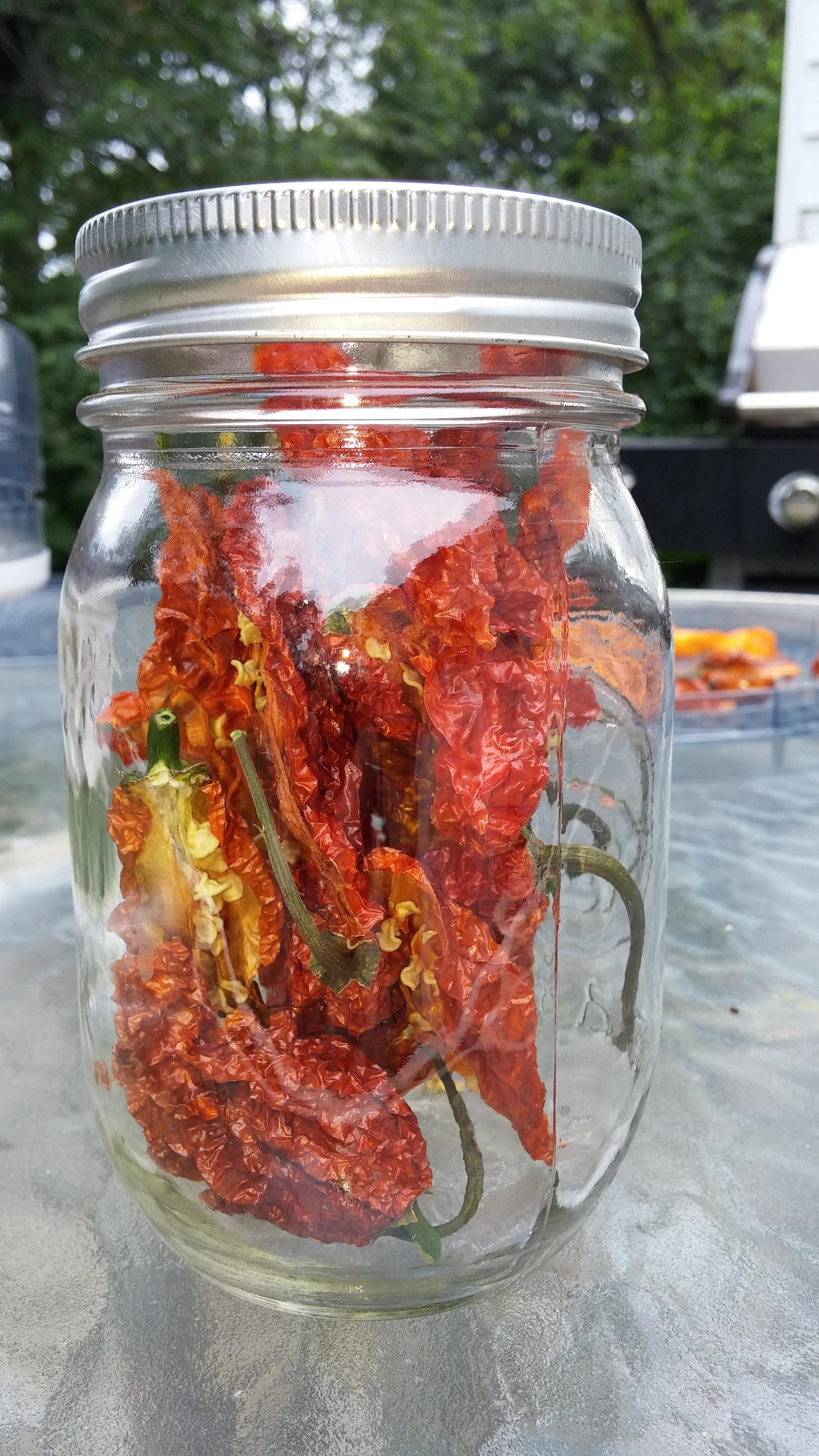 Picture of Your Reward!  Fire in a Jar.