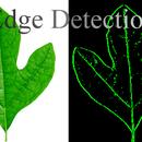 c# Edge Detection
