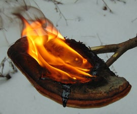 Pine Resin Torch