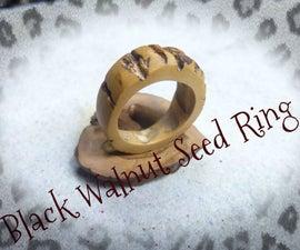Black Walnut Seed Ring.