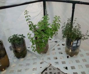 5 Minute Self Watering Planters