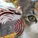 Car anti-sleeping cat lounge device (Arduino project)