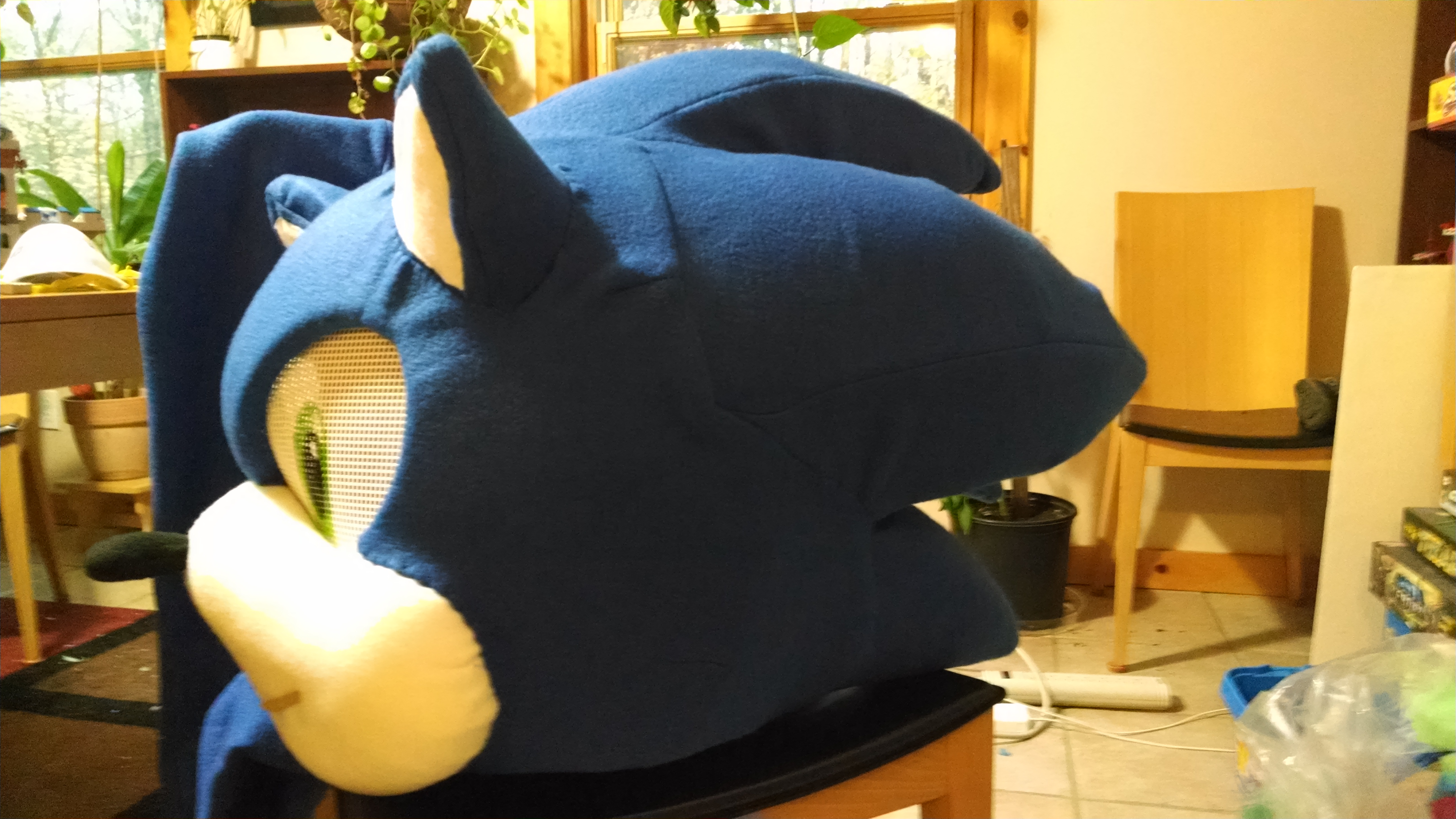 Picture of Sonic's Head: Covering