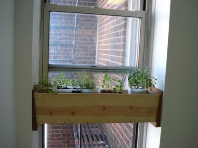 Fill Installed Box With Plants.