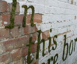 How to Make 'Moss Graffiti'