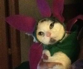 How to Create a Cute Flower Cat Costume