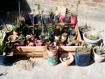 Preparing for Garden