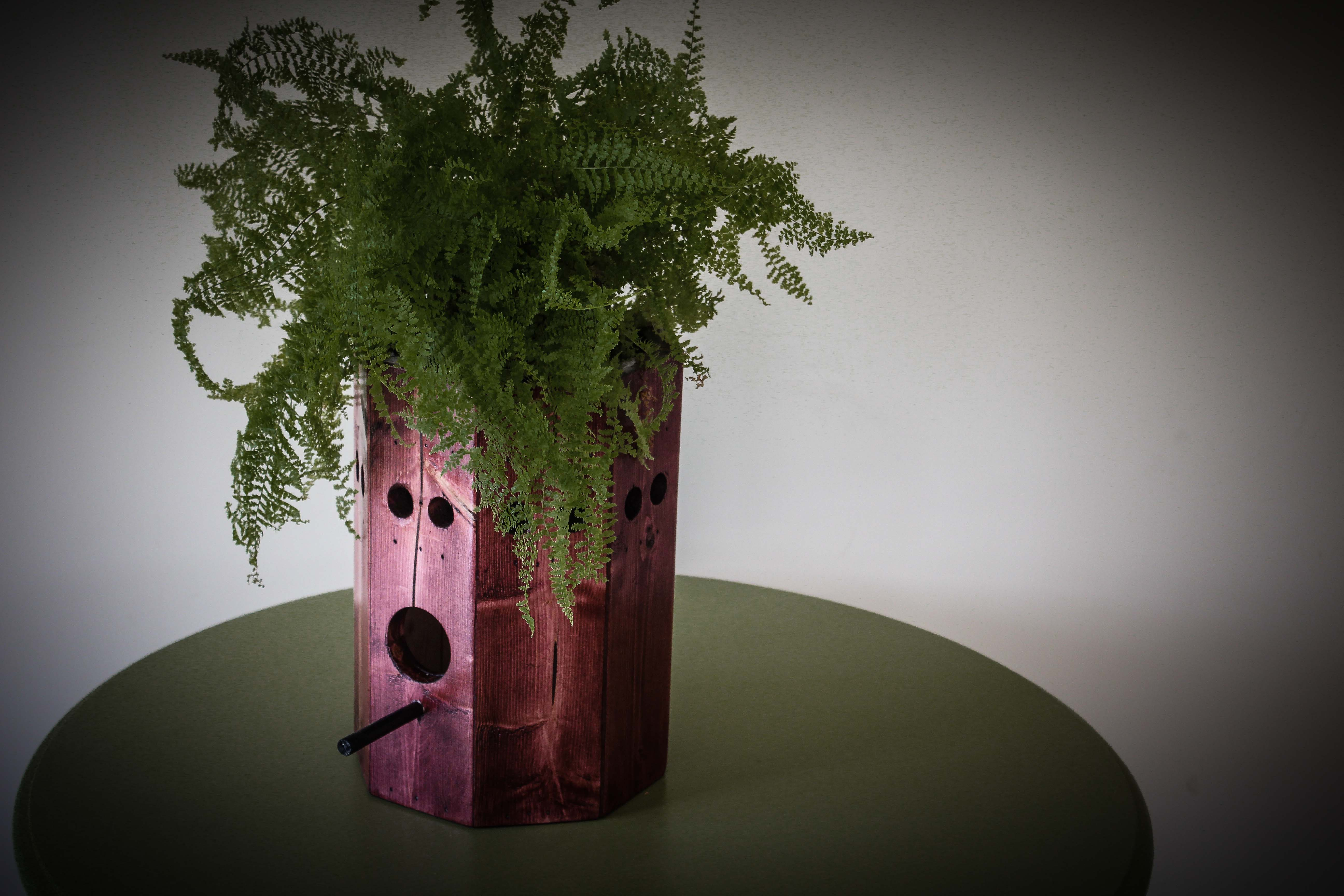 Picture of OPTIONAL – Ditch Light and Add a Plant to the Top Portion