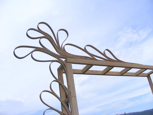 Wedding Arch With Steam Bent Wood .