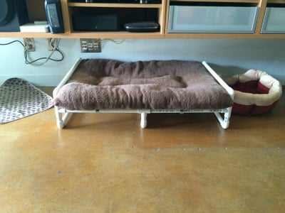 Place Your Dog Bed
