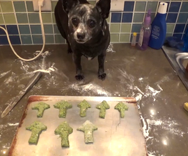 Homemade Spinach Dog Biscuits