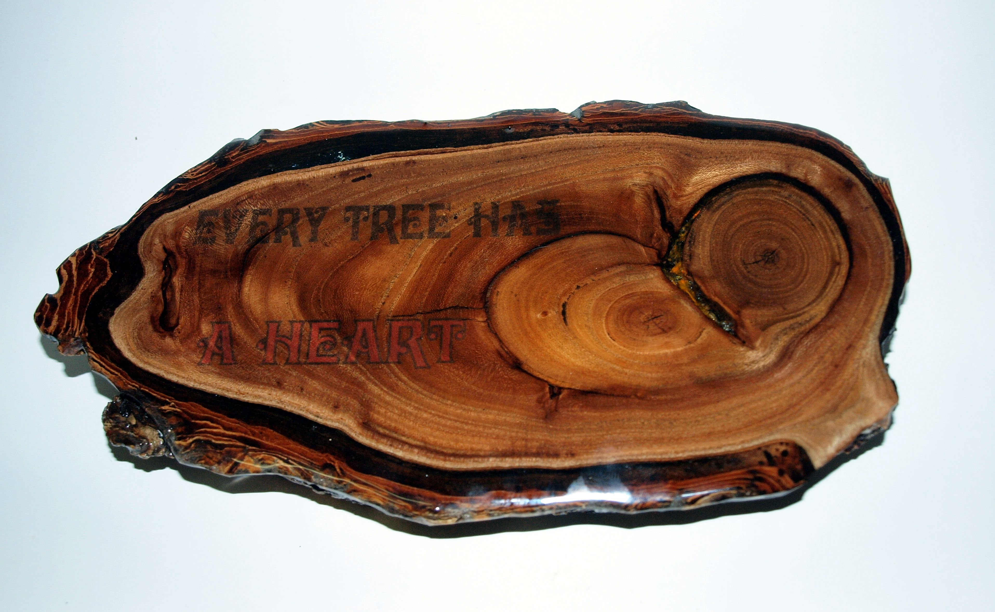 Picture of Gnarly Wood Projects With Weird Wood, Broken Glass, LED's and Epoxy.