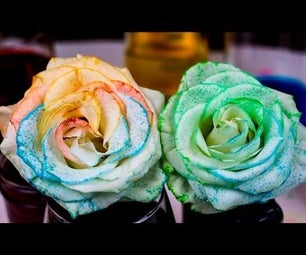 How to Tie Dye Flowers With Osmosis