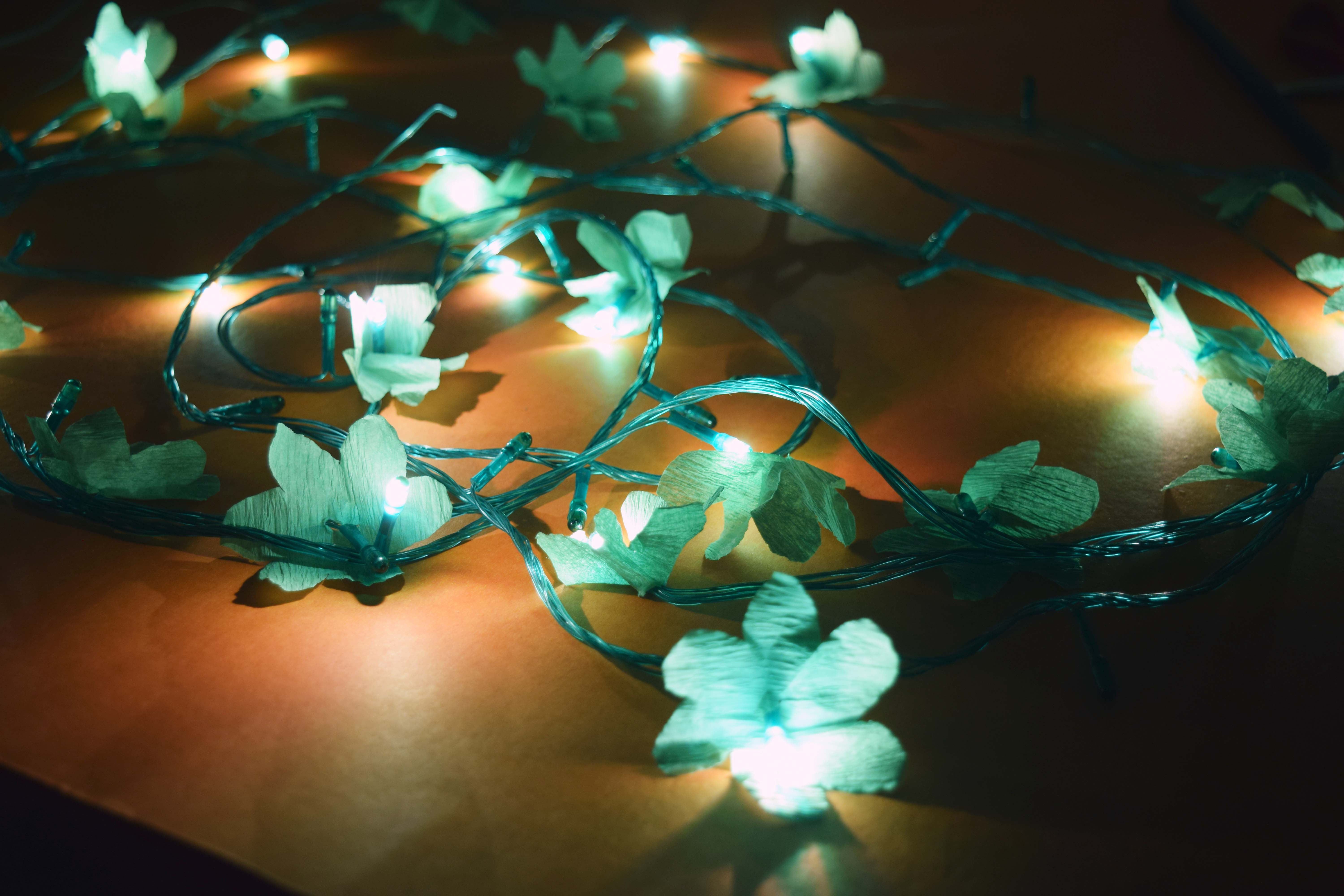 Picture of Improved Decorative Serial Lights