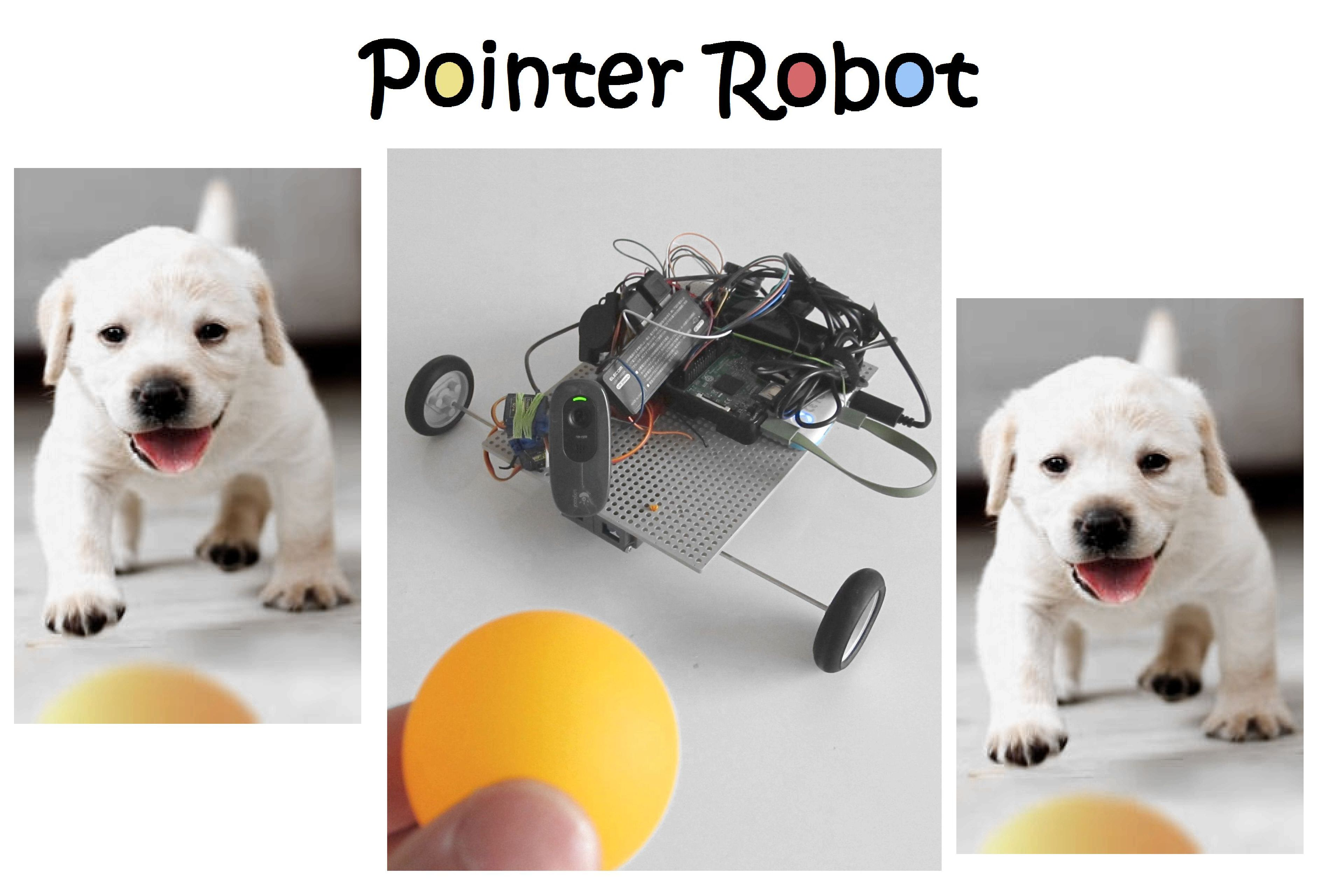 Picture of Pointer Dog Robot With RPi and Arduino